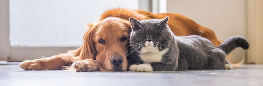 Pets and Animals! Cover Image